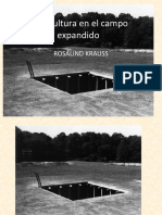 campo expandido.pptx