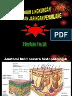 K9. Pengaruh Lingkungan Pada Kulit Dan Jaringan Penunjang - Dr.retno Mustikaningsih, M.kes, Sp.kk