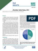 Fetal & Perinatal Mortality 2013