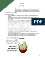 Manual de Tecnicas de Cafereria 2