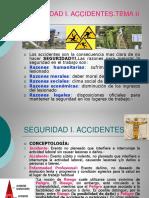 (2). Accidente e Incidente