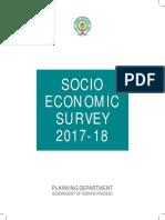 Socio Economical Survey  2017-18.pdf