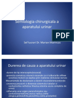 Lp.1.5.Semiologia Chirurgicala a Aparatului Urinar
