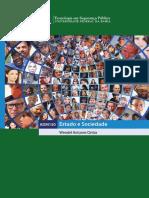 eBook Estado e Sociedade-Tecnologia Em Seguranca Publica UFBA