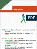 Reflex e