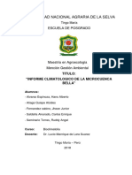 Informe Final Microcuenca Bella (1)