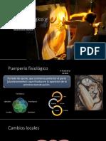 Puerperio-fisiológico-y-patológico 2.pptx