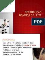 reprodução de bovinos de leite