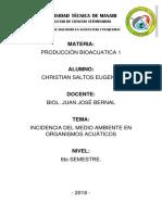 consulta produccion