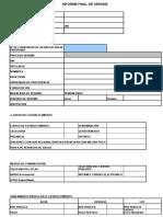 Modelo Informe Serums 2015_obstetricia
