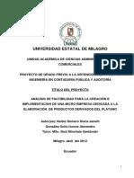 Análisis de Factibilidad Para La Creación e Implementación de Una Microempresa Dedicada a La Elaboración de Productos Derivados Del Plátano.