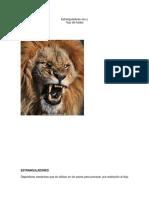 314995331-restricciones-de-flujo-docx.docx