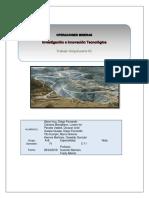 Estabilidad y Control de Taludez en Minería Superficial