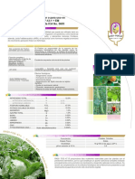 ficha_Radifos.pdf