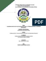 plan de negocio - FORMULACION-converted.docx