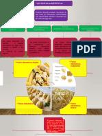 expocion de pastas alimenticias 2018.pptx