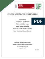 CULTIVO DE TOMATE EN INVERNADERO.docx