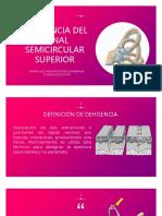 Dehisencia Del Canal Semicircular Superior