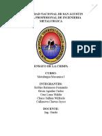 141671785-Ensayo-de-Chispa.doc