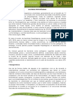 BACTERIAS-2.pdf