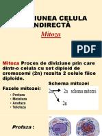 Diviziunea Celulara Mitoza vs Meioza-Animatie