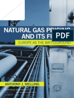 Natural Gas Pricing and Its Future