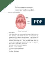 100268693-Anatomi-Dan-Fisiologi-Tonsil.doc