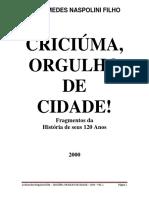 Historia Criciuma Orgulho de Cidade Vol i
