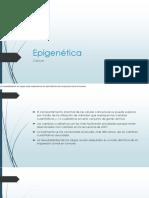 Epigenética Cancer