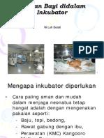 Ponek Inkubator Revisi