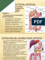 Circulacion Hepatica
