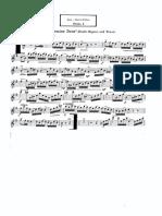 Dohnanyi Zenker Flute Piccolo Audition