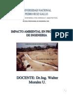 CURSO-Impacto Ambiental Ciclo 2018-I