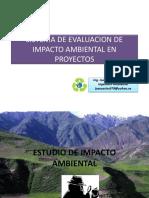 estudiodeimpactoambiental.pdf