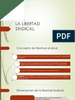 1.- LIBERTAD SINDICAL (Concepto, LS Individual) (2)