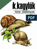 Csigák,kagylók.pdf