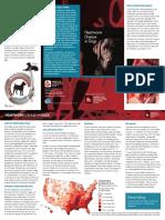 Heartworm Disease.pdf