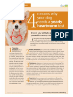 Why Test for Heartworms