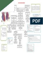 Woc Patent Ductus Arteriosus 1