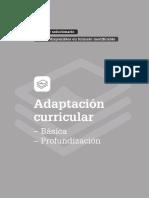 _fichas-para-la-adaptacion-curricular.pdf