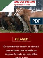 pelagens.pdf