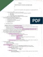 216630042-Sinteze-ISTORIE-Bacalaureat.pdf