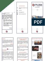 TRIPTICO CONYCONSA.pdf