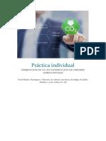 Práctica Individual Entrega