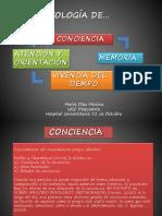 Psicopatologia y Cognicion.d-az M- (2)