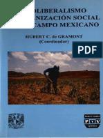 La CNC y El Nuevo Movimiento Campesino 1984-1994