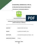 Eficiencia de Produccion de Biodiesel de Aceites Vegetales y Animales