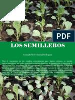 Armando Nerio Guedez Rodríguez - Los Semilleros