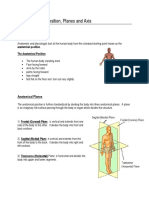the_anatomical_position.pdf