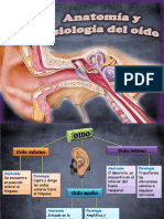 anatomiayfisiologiadeloido-121203075829-phpapp02